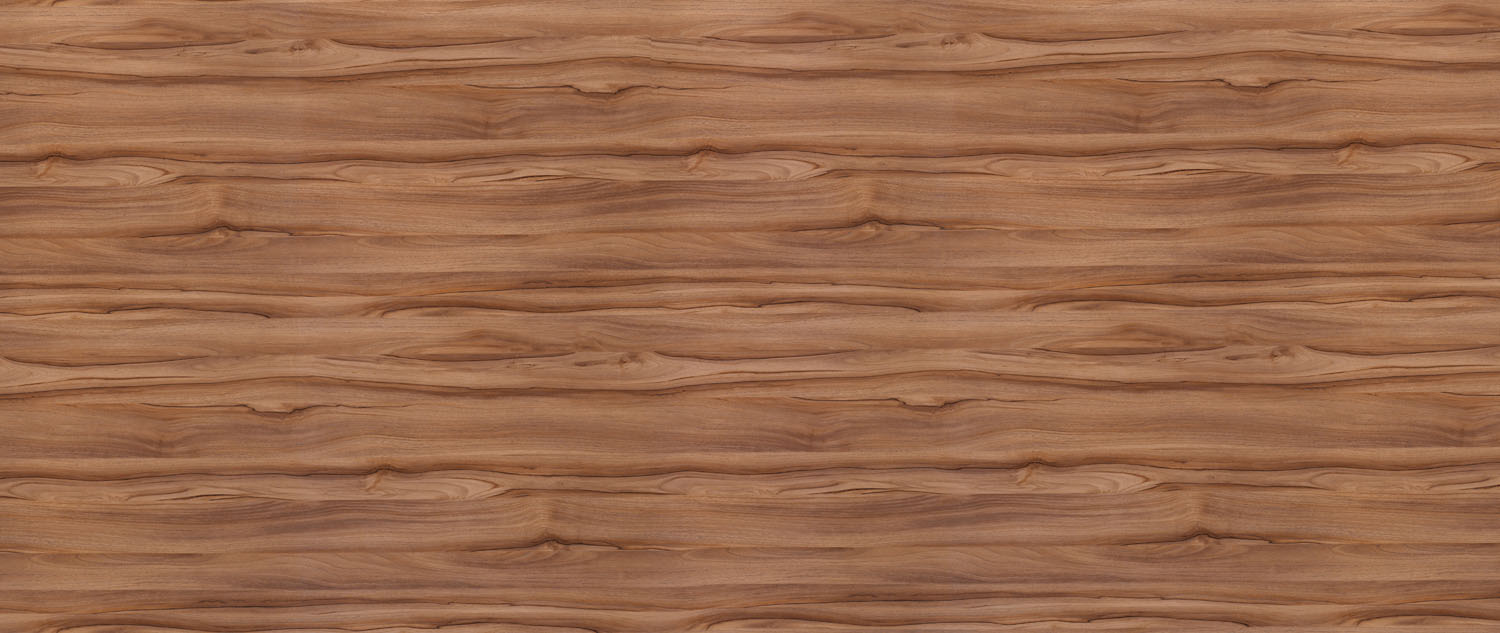 5487 OILED walnut FOR X