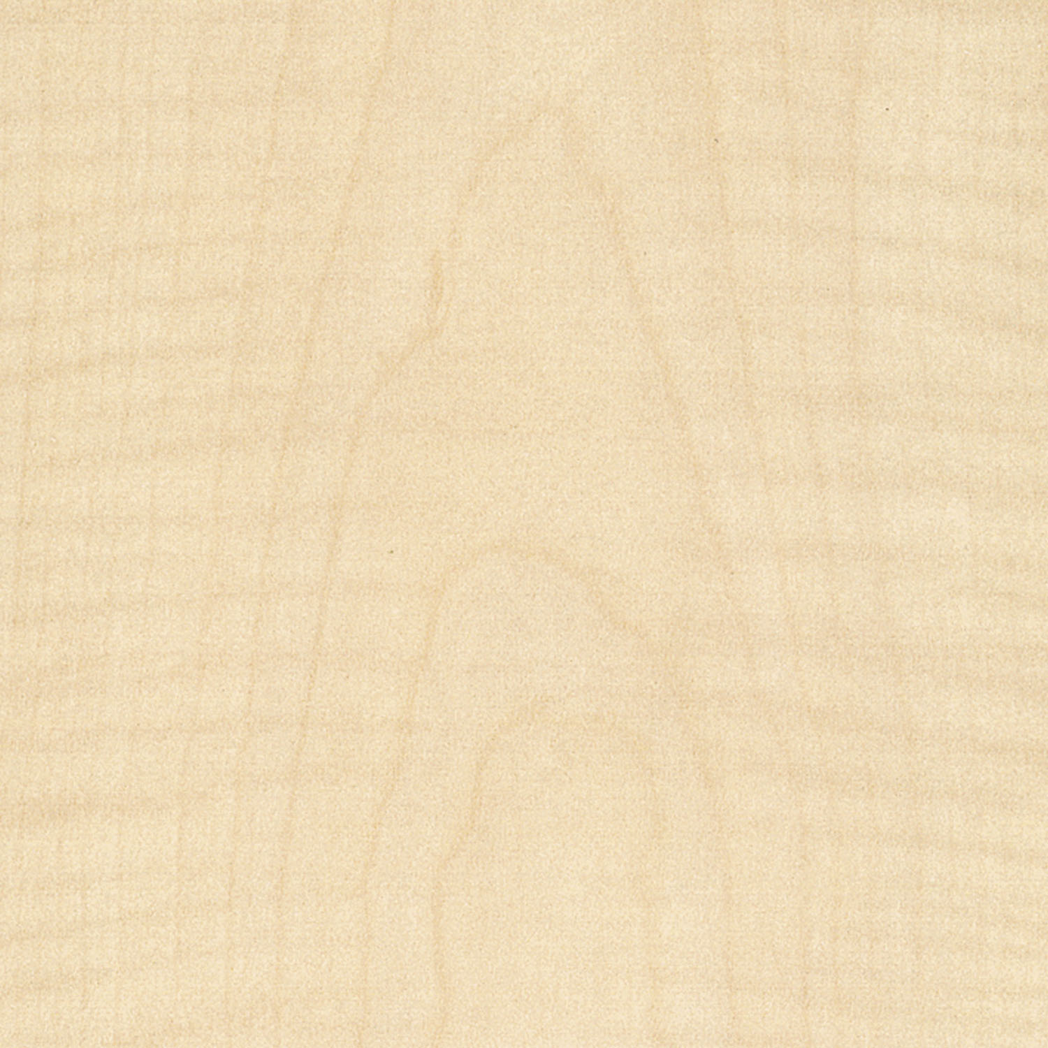 F1143 FrenchSycamore Matte58 Swatch