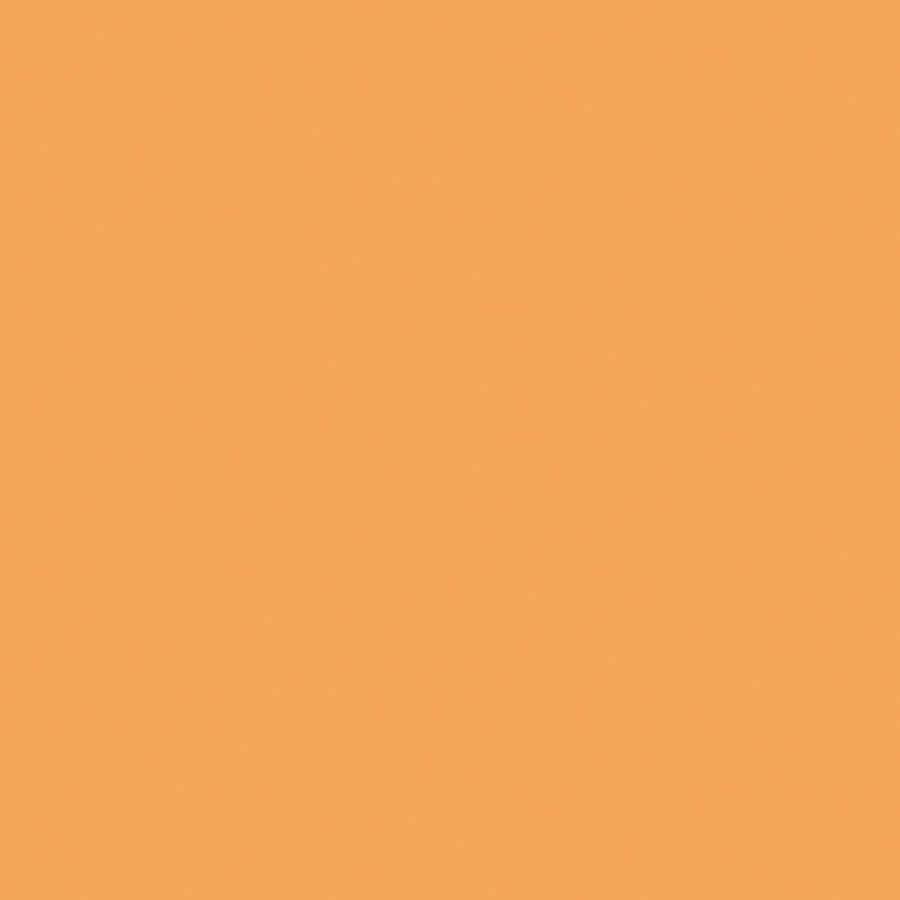 F4156 Caramel Matte58 Swatch