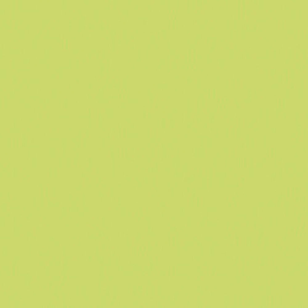 F4177 Lime Matte58 Swatch