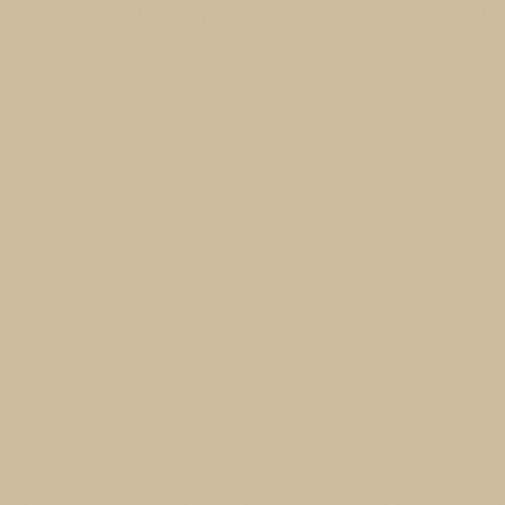 F8751 Mojave Matte58 Swatch