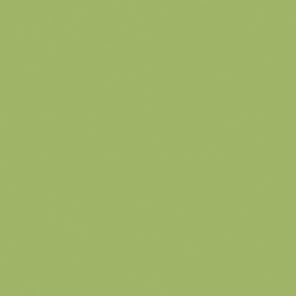 F8820 LeafGreen Matte58 Swatch