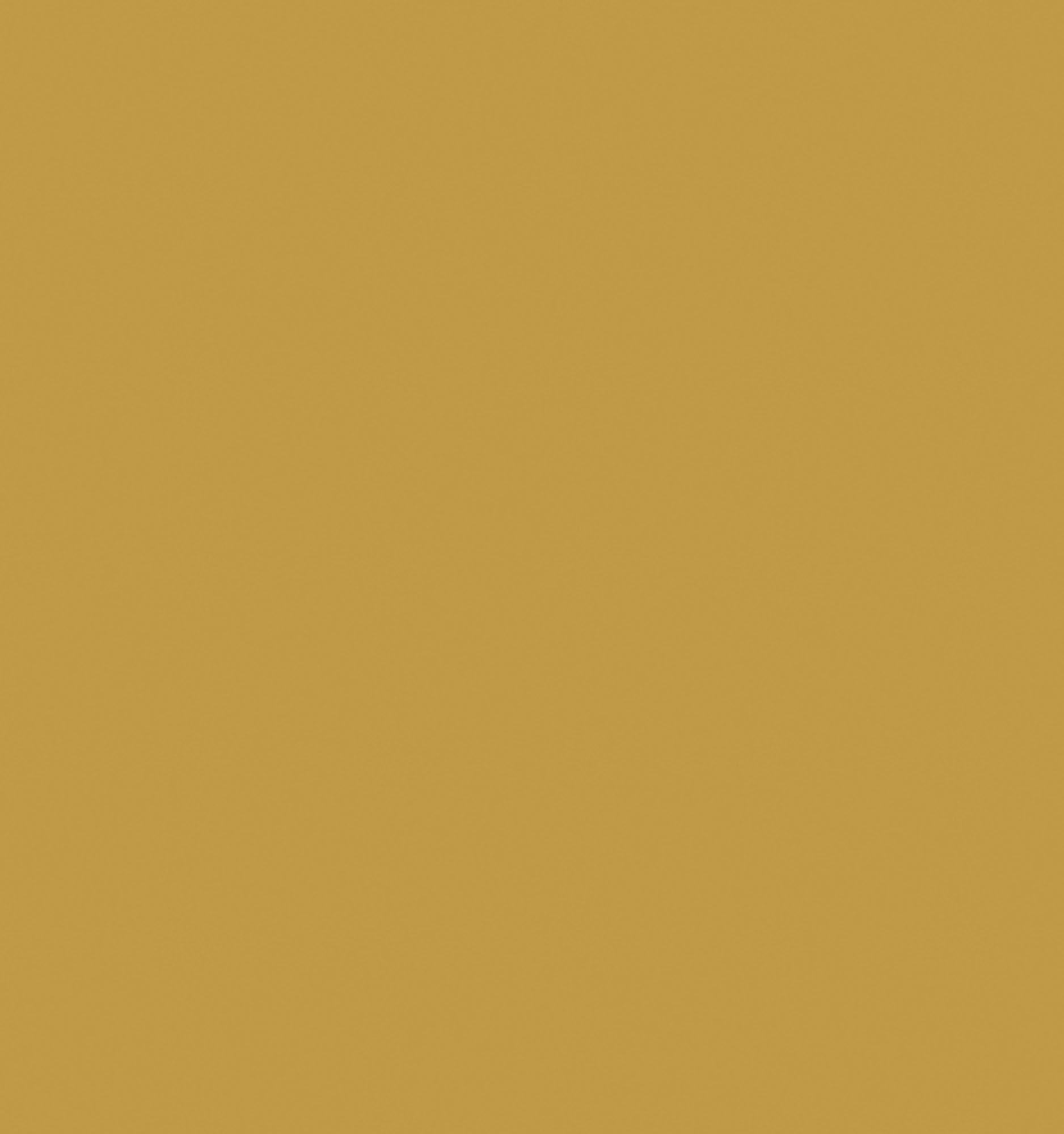 M2041 Polished Gold Aluminium